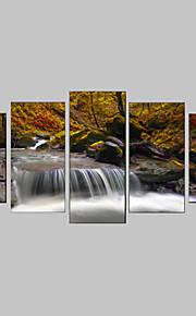 Landscape / Kasvitiede / Valokuvaus / Realismi / Matkailu Canvas Tulosta 5 paneeli Valmis Hang , Horizontal