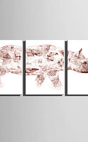 E-HOME Stretched Canvas Art Fantastic Rhino Decoration Painting  Set Of 3