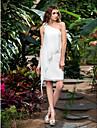 Lanting Bride® 시스 / 칼럼 퍼티트 / 플러스 사이즈 웨딩 드레스 - 클래식&타임레스 / 피로연 드레스 2014 봄 숏 / 미니 원 숄더 쉬폰 와