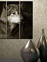 Toiles Tendues Animal Art Loup Lot de 3