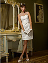 Sheath/Column Plus Sizes Wedding Dress - Ivory Knee-length Scoop Tulle