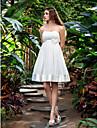 Lanting Bride® A-라인 퍼티트 / 플러스 사이즈 웨딩 드레스 - 클래식&타임레스 / 피로연 드레스 리틀 화이트 드레스 무릎 길이 끈없는 스타일 쉬폰 / 스트래치 새틴 와