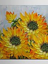 Hand Painted Oil Painting Floral Sun Flower with Stretched Frame