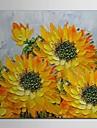 Dipinto a mano della pittura a olio floreale del fiore di Sun con telaio allungato