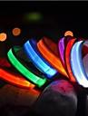 Katter / Hundar Halsband LED Lampor Solid Röd / Vit / Grön / Blå / Gul / Orange Nylon