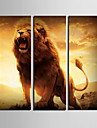 Stretched Canvas Art Animal av The King Set om 3
