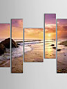 Oil Paintings Set of 5 Modern Landscape Sand Beach Sea Hand-painted Canvas Ready to Hang