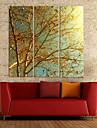 Golden Memories Canvas Konst Botaniska Set om 3