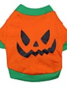 Katter / Hundar Dräkter/Kostymer / T-shirt / Outfits Orange Hundkläder Vår/Höst Tecknat Cosplay / Halloween