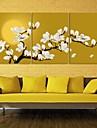 e-Home® opgespannen doek kunst magnolia decoratie schilderij set van 3