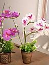 """9.8 """"l 11,8"""" h vintage phalaenopsis i brons plastrotting kruka"""