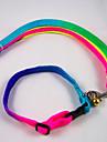 Hundar Halsband Regnbåge Nylon