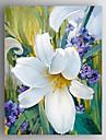 HANDMÅLAD Blommig/BotaniskModerna En panel Kanvas Hang målad oljemålning For Hem-dekoration