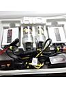 dc 55W hög ljusstyrka gömde xenon kit med stabil kvalitet för bilmodell före 2006 år