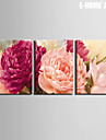 Botanico Impressao em tela 3 Paineis Pronto para pendurar , Vertical