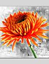 Peint a la main Nature morte / A fleurs/BotaniqueModern / Classique / Traditionnel / Pastoral / Style europeen Un Panneau ToilePeinture a
