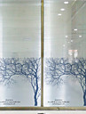 fereastră de film fereastră stil abțibilduri fereastră de film de argint mesteacăn mat din PVC - (60 x 58) cm
