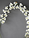 1 1 Gren Polyester Orkidéer Bordsblomma Konstgjorda blommor 198(78\'\')