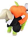 Hundar Dräkter/Kostymer / Jumpsuits Orange Hundkläder Vinter / Vår/Höst Pumpa Gulligt / Cosplay / Halloween
