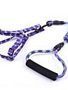 Chien Harnais / Laisses Ajustable/Reglable / Securite / Doux Mosaique Jaune / Violet / Orange / Rouge Rose Nylon