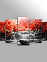 Toile Paysage A fleurs/Botanique Moderne,Cinq Panneaux Toile Horizontale Imprimer Art Decoration murale For Decoration d\'interieur