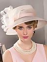 Pană Diadema-Nuntă Ocazie specială Informal Exterior Pălărioare Pălării/Căciuli 1 Bucată