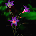 Solární led květina světlo (1049-cis-28080)