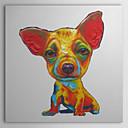 Ručno oslikane Oil Painting Animal Chihuahua