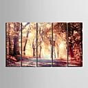 e-HOME® plátně umění pád mangrovových dekorativní malby sadě 5