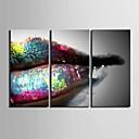 E-home® pruži platnu umjetnosti usne ukras slikanje set od 3