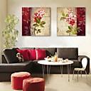 E-home® pruži platnu umjetnosti cvijet dekorativna slikanje set od 2