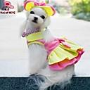 kočičky / pejsky Šaty / šátky a kloboučky Žlutá / Růžová Oblečení pro psy Léto Svatba / cosplay