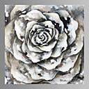 Mrtva priroda / Fantazija / Slobodno vrijeme / Botanički / Moderna Canvas Print Jedna ploča Spremni za objesiti , Kvadrat