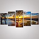 plátno Set Krajina Volný čas Květinový/Botanický motiv Moderní Tradiční,Pět panelů Horizontálně Tisk Art Wall Decor For Home dekorace