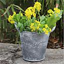 zahrada dekorativní květináč tvůrčí bytový přistání retro dělat staré cínové ozdoby