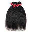 人間の髪編む ブラジリアンヘア ストレート 12ヶ月 3個 ヘア織り